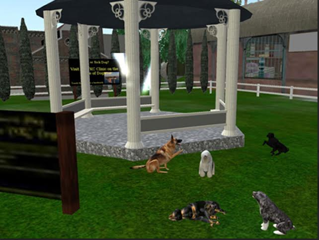 The VKC Dog Park in Caledon as it appeared in 2009. ~Rosanna Himmel